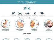 Вызов ветеринара на дом в Ростове-на-Дону круглосуточно - низкие цены!