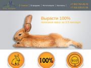 ЛПХ «Хуторки» - Разведение и продажа кроликов
