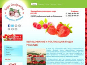 Выращивание и реализация ягод и рассады Ягоды Ставрополья г. Невинномысск