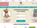 Студия груминга Hollywood в Челябинске, стрижка собак и кошек в зоосалоне