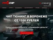 Чип-тюнинг в Воронеже, отключение EGR и сажевых фильтров | ProChip