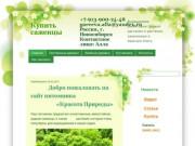 Выращиваем реликтовые, редкие растения и растения, занесенные в Красную Книгу (Россия, Новосибирская область, Новосибирск)