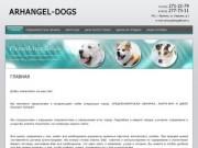 Разведение Продажа породистых собак ARHANGEL-DOGS г. Фрязино