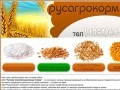 РусАгроКорм тел/факс: (4852) 64-22-32. купить пшеницу ярославль