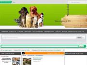 ателье-магазин пошива одежды для собак . (Россия, Владимирская область, Александров)