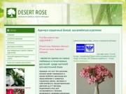 DESERT ROSE Интернет магазин семена адениума (Россия, Волгоградская область, Волгоградская область)