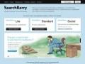 SearchBerry - Система управления контекстной рекламой