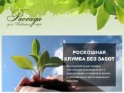 Рассада и цветы — Заказать онлайн в Дивногорске