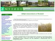 Поселок Мулино Володарского района Нижегородской области (Административный центр муниципального образования Мулинский сельсовет)