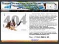 Создание сайтов в Москве и Московской области (Тел: +7(929) 672 00 05)