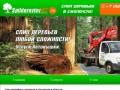 Спил деревьев Смоленск (Россия, Смоленская область, Смоленск)