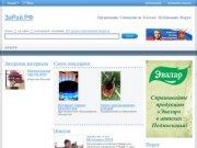 Зарайск и Зарайский район в Интернете