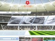 Профессионально строим и укладываем спортивные и игровые площадки. (Россия, Свердловская область, Екатеринбург)