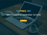 Продвижение и создание сайтов в Нижнем Тагиле — веб-студия «PRICE-NT»