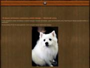 Из града Картауж | племенной питомник пород САО, Сиба - Ину, Пиринейкая горная собака