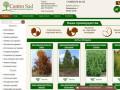 Садовый центр Кострома Центросад предлагает широкий ассортимент саженцев деревьев и крупномеров, кустарников. В наличии большой выбор. (Россия, Костромская область, Кострома)