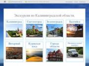 Тамара Тур по Калининградской области