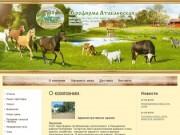 Птицеводство Агрофирма Атабаевская  Татарстан