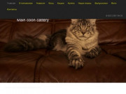 "Main coon cattery ""Good LodMein"""