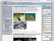 Все основы и тонкости рыбной ловли (Тува, г. Туран)
