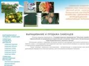 Выращивание и продажа саженцев - Джанкойский питомник - саженцы оптом