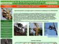 Удаление опасных деревьев | www.спилидерево.рф | 8 (906) 042-80-24