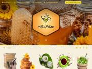 Мёд и пчёлы - все от и для пчеловодства