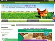 Куры несушки | Клетки для животных | Товары для фермеров