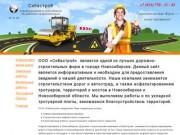 """Компания """"Сибастрой"""" - асфальтирование в Новосибирске (Новосибирская область, г. Новосибирск, Телефон: 8913-770-31-83)"""