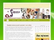 Стрижка собак в Балашихе, Железнодорожный, Реутов, Щелково, Новогиреево