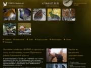Охотничье хозяйство OOO «Заимка» - охота в Смоленске, охота в Смоленской области