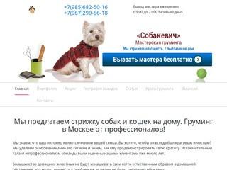 Стрижка собак и кошек - Mosgroomer.ru